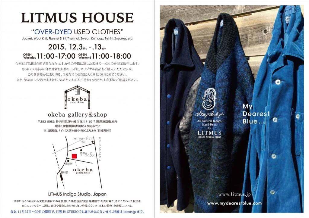 inv 2016 Litmus House 1110